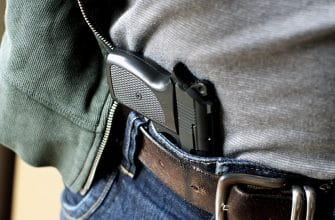 Big Changes in Michigan's Concealed Carry Process