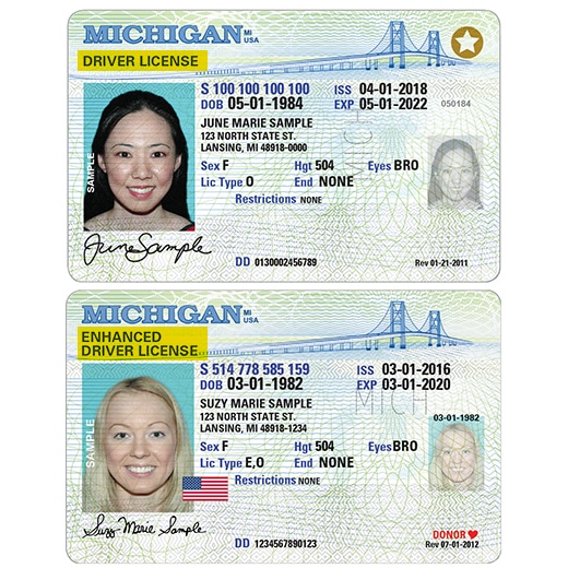 what is your drivers license number michigan